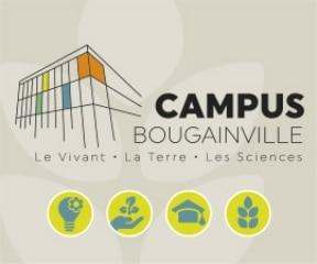 Agence communication en Seine-et-Marne